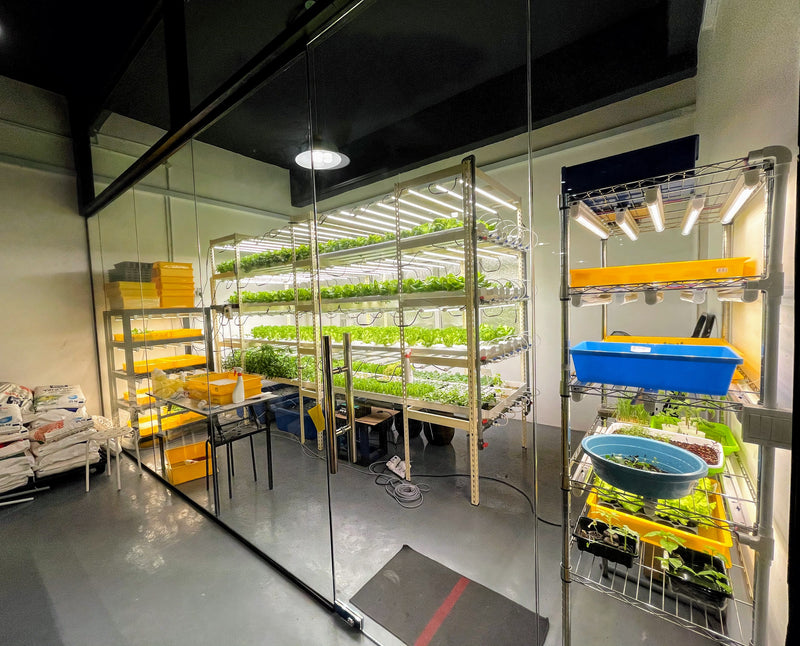 Hydroponics Farming Course with FREE Farm Set (Jan 2021)