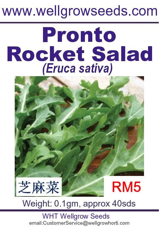 WHT - Pronto Rocket Salad - CityFarm