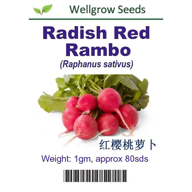 Radish Red Rambo Seeds(1gm, 80 seeds) - CityFarm