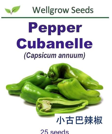WHT- Pepper Cubanelle (25sds) 小古巴辣椒 Benih Cili