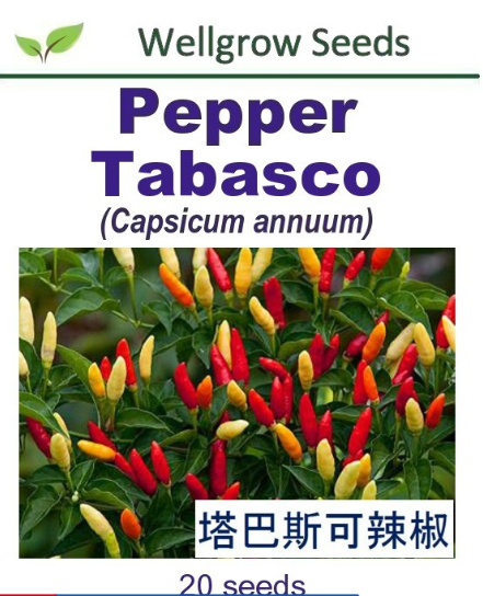 WHT- Pepper Tabasco (20sds) 塔巴斯可辣椒 Benih Cili - CityFarm