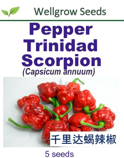 WHT- Pepper Trinidad Scorpion (5sds) 千里达蝎辣椒