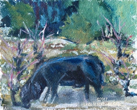 """Swine in the Vines, Lentheric, L'Herault France"" Oil"