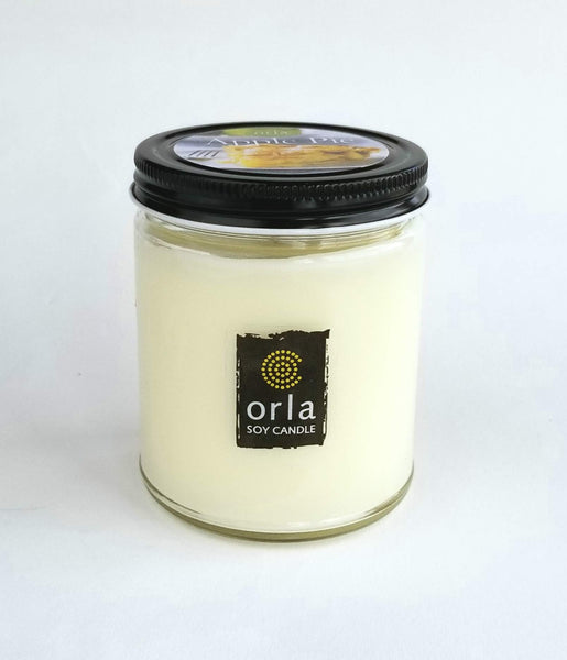 9 oz. salsa jar style natural soy wax candle Orla Soy Candle Rhode Island