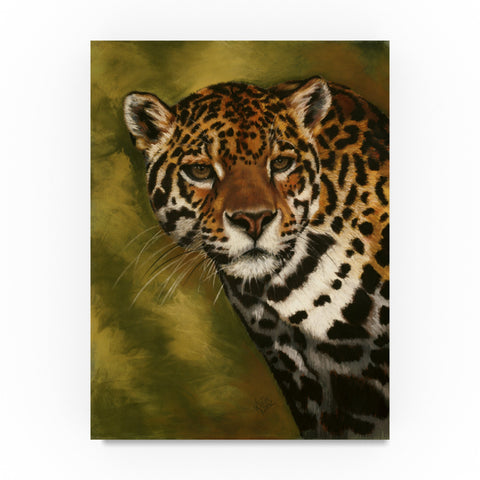 Barbara Keith 'Night Watch' Canvas Art