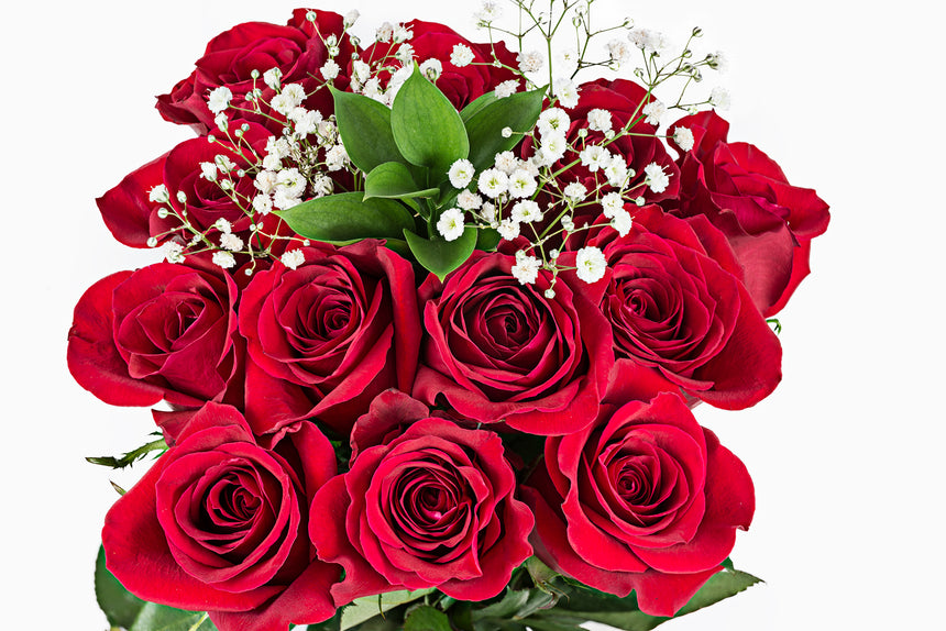 Flowers bouquet called the broadway. Dozen roses with filler & green in a clear sleeve. Fresh Wholesale flowers at 48 Fresh