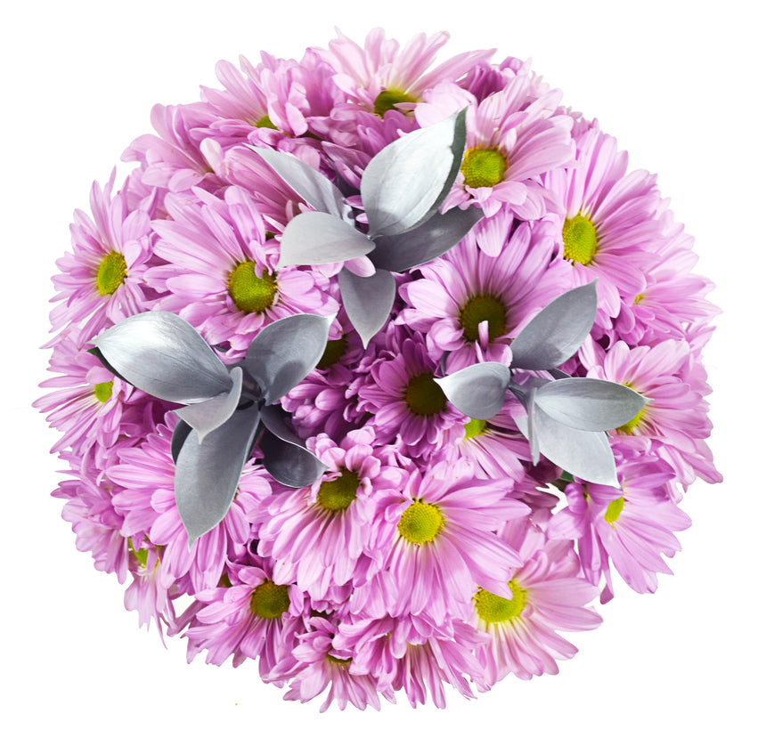Pink pomp made of daisies with silver tinted ruscus