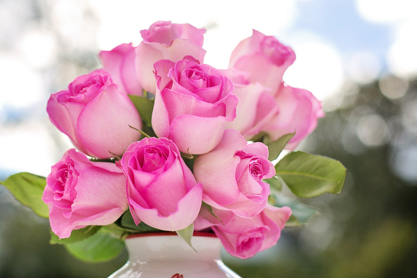 Pink roses at wholesale prices flor Mother's day