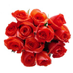 wholesale prices flowers wholesale flowers wholesale best prices, wholesale roses best rose beautiful roses wholesalers export flowers fresh cut flowers fresh flowers