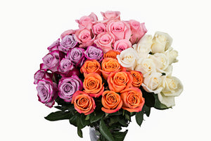 Assorted Color Roses.