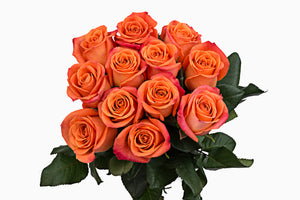 a dozen orange-yellow roses. The variety of this roses is cherry brandy. Orange roses are symbols of passion and energy, they are use to express desire, fervor and pride.