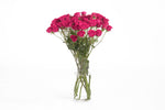 Hot pink spray roses in their vase. Hot pink roses are symbols of elegance and grace.