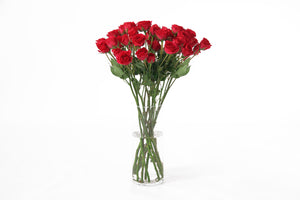 Red spray roses in their vase. Red roses express love, they convey in feelings of desire and devotion.