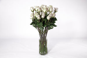 bunch of beautiful white roses. Fresh cut flower, flowers for events, dance recitals, events, wedding flowers, wedding arrangements, flower, beautiful flowers, bulk flowers, cut flowers, wedding planners, wholesale prices,  flowers, freshly cut flowers, color flowers, decoration