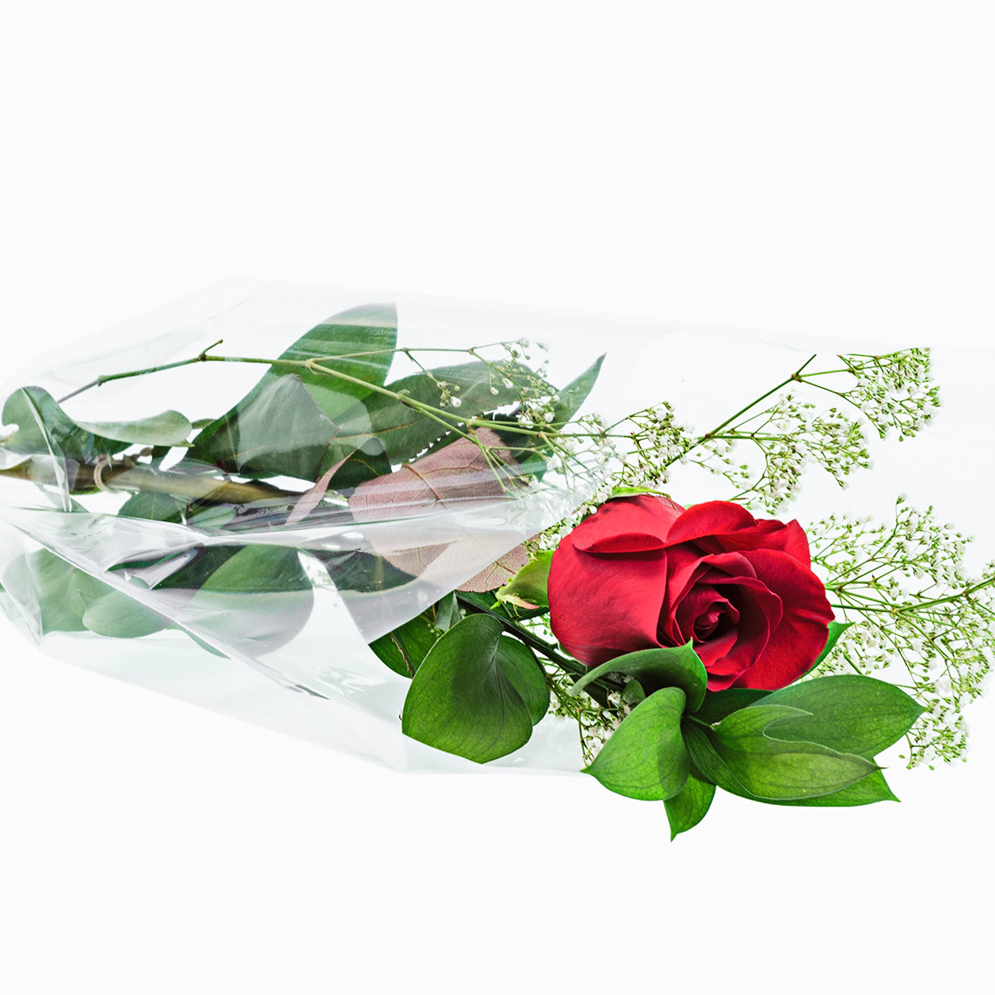 roses delivery, wholesale roses, quality flowers, roses for business, fundraising ideas, fresh rose bouquets, wholesale roses bouquet, roses