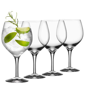 Gin and Tonic Set