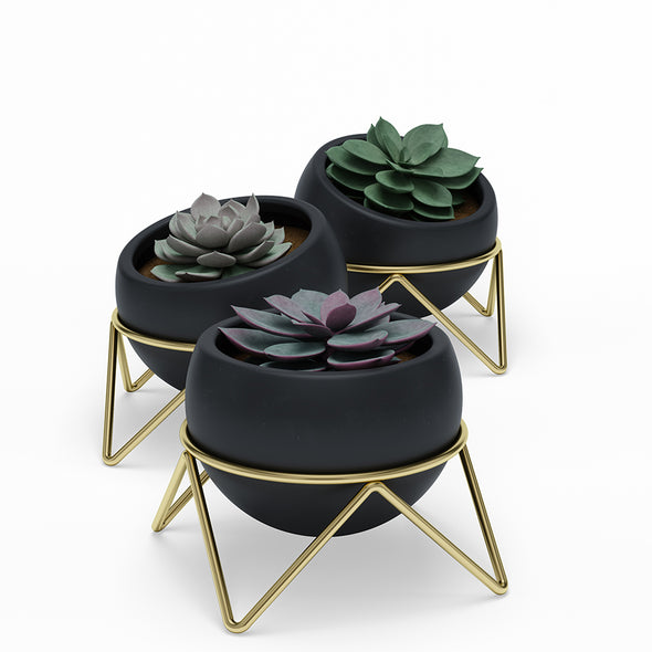 Potsy Planter Set