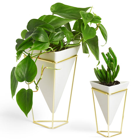 Umbra Trigg Vase Set of 2 1004372-524