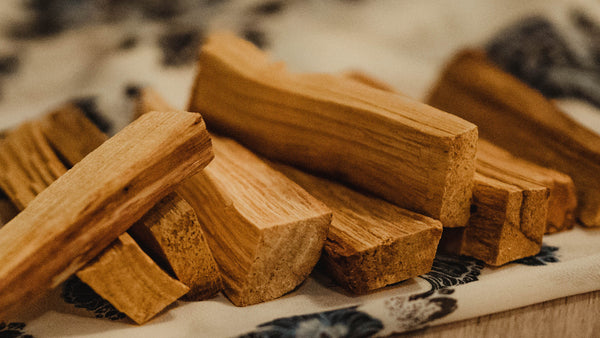 Palo Santo Wood 10 Sticks Wholesale Palo Santo