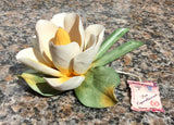 Capodimonte Flower - Water Lily #1