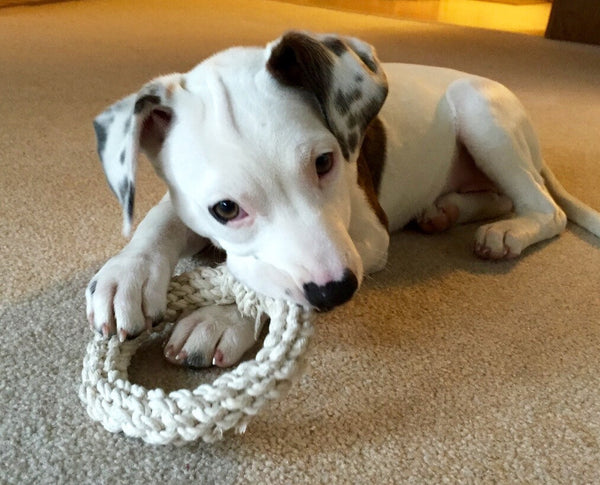 Hand Knotted Rope Rings - The Shabby Dogs