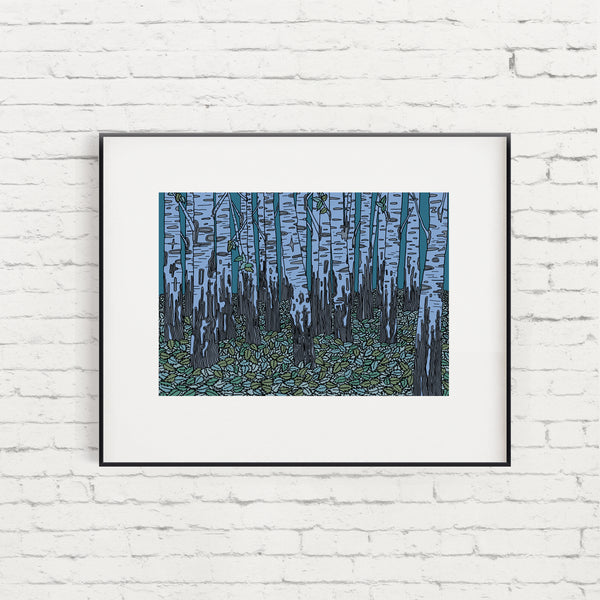 Essex Birch Trees Limited Edition Giclée Print