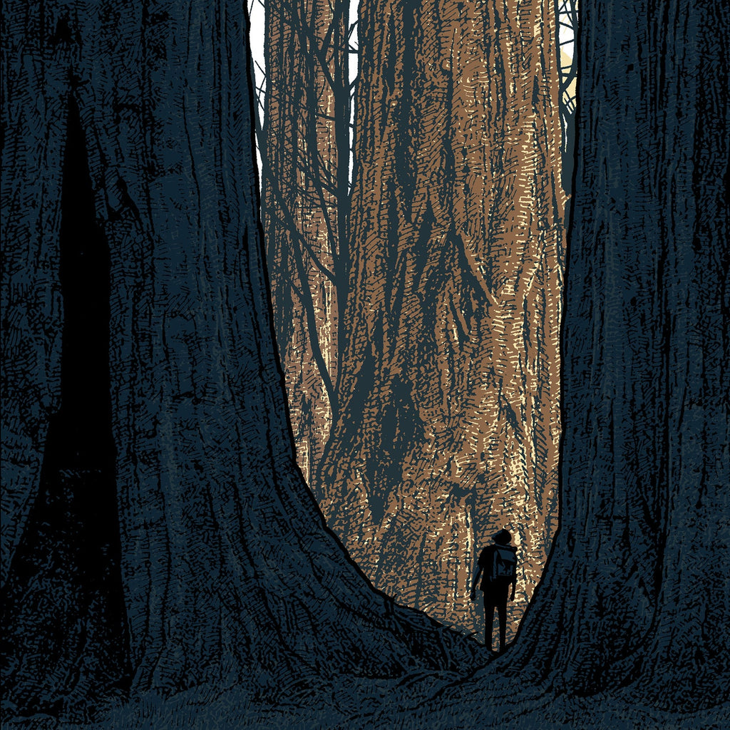 """Avenue of the Giants"" (Detail 1) by Dan McCarthy"