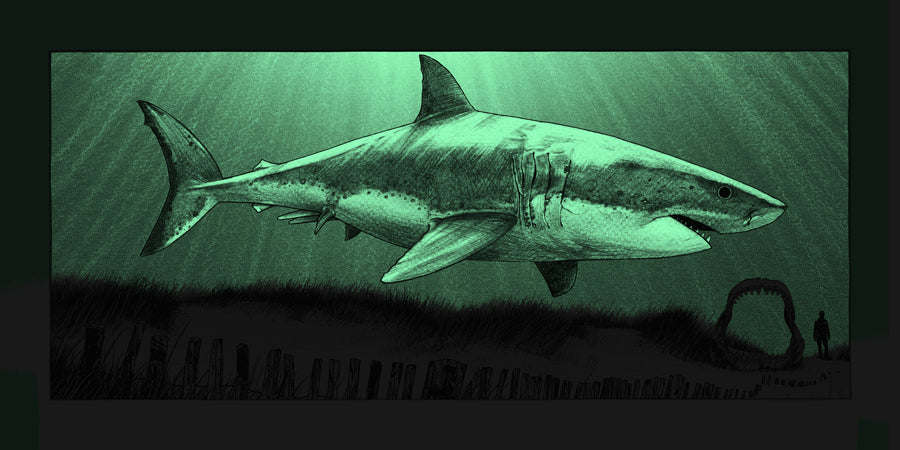 """What Once Was - Megalodon"" by Dan McCarthy - GID Detail"