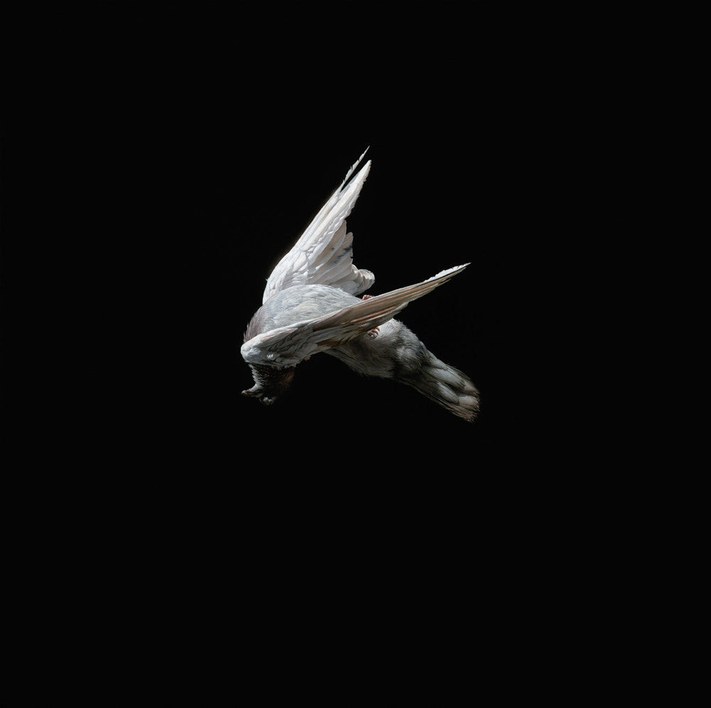 "Jeremy Geddes - ""Miserere 6"" 1st Edition - 2013"