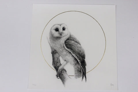 "Vanessa Foley - ""Barn Owl"" 1st Edition - 2016"