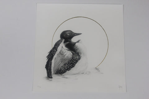 "Vanessa Foley - ""Common Loon"" 1st Edition - 2016"