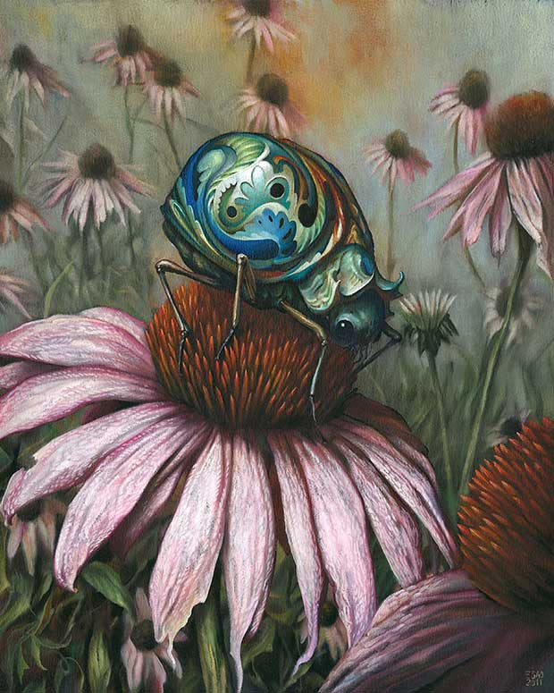 "Esao Andrews - ""Echinacea"" 1st Edition - 2012"