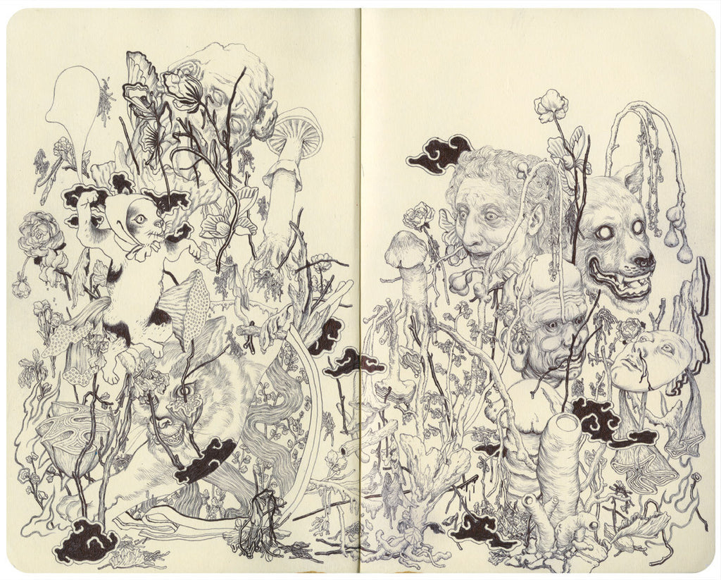 "James Jean - ""Fungi III"" 1st Edition - 2011"