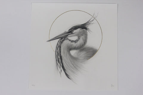"Vanessa Foley - ""Great Blue Heron"" 1st Edition - 2016"