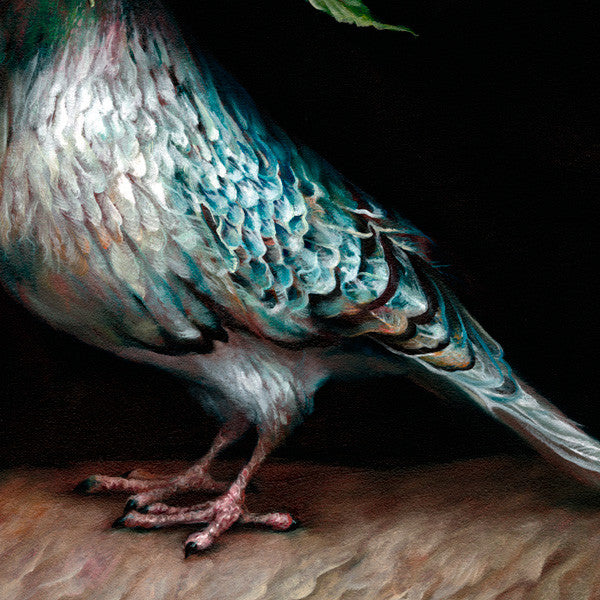 "Esao Andrews - ""Hope Pigeon"" 1st Edition - 2012 (Detail 1)"