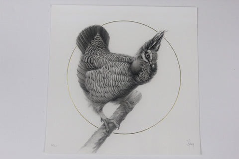 "Vanessa Foley - ""Prairie Chicken"" 1st Edition - 2016"
