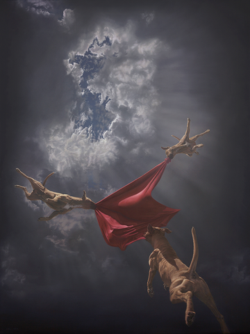 "Joel Rea - ""Return to Genesis"" 1st Edition - 2016"