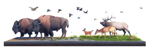 "Josh Keyes - ""Sowers"" 1st Edition - 2010"