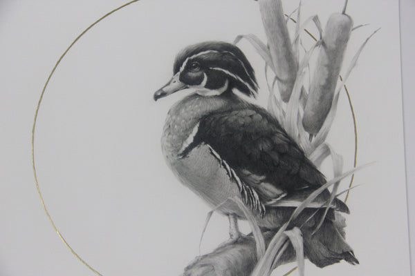 "Vanessa Foley - ""Wood Duck"" 1st Edition - 2016 (Detail 1)"