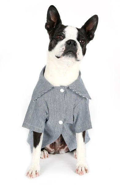 Romy + Jacob Stripe Cotton Jersey Dog Shirt