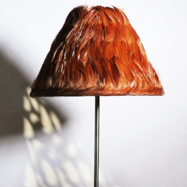 Red Feather Lamp