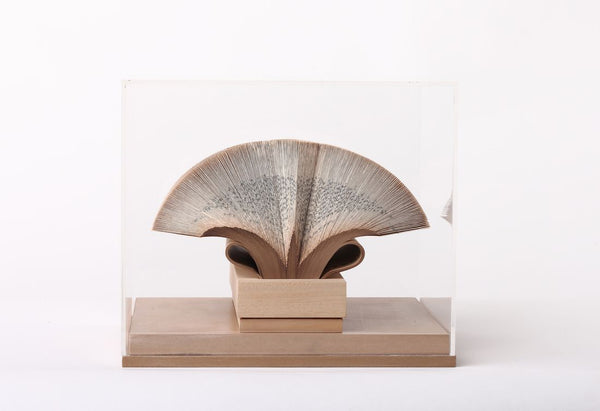 Wig Diamond - Boxed Book Sculpture