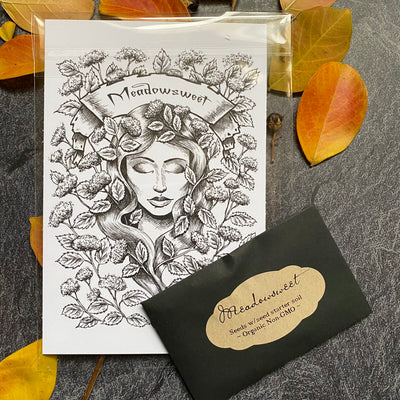 Meadowsweet Garden Seeds & 4x6 Grimoire Art