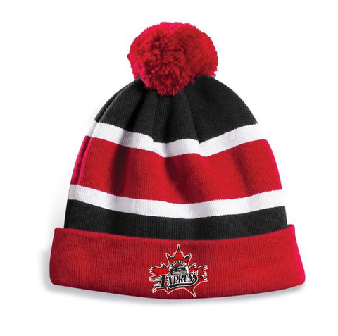EXPRESS Embroidered Pom Pom Toque