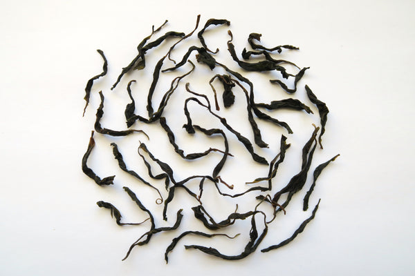 "Baiying ""Benshan"" Varietal <br>'18 Single Tree Sheng Puer<br>白莺山 本山 单株生普洱"