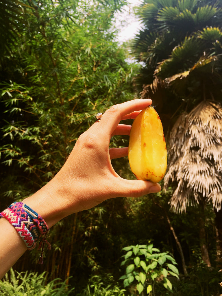 Hiptipico, Travel Blog, Guatemala, tropical, vegetables, exotic fruit, guatemala travel, female travel blog, living abroad