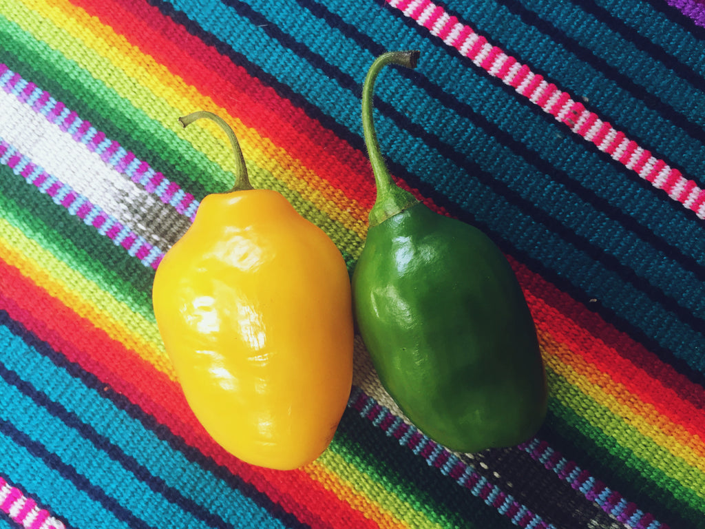 Hiptipico Guatemala Pepper Recipe, food recipe blog, foodie blog, exotic food, easy recipe