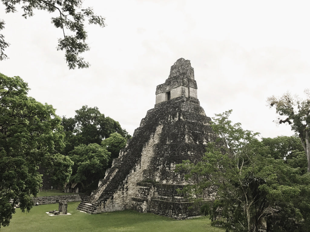 A photo of some of the ruins in Tikal National Park