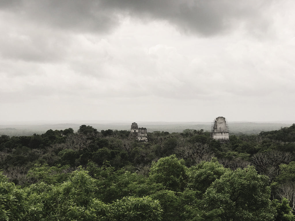 Another photo from the top of a monument at Tikal National Park where you can see all of the tree lines.