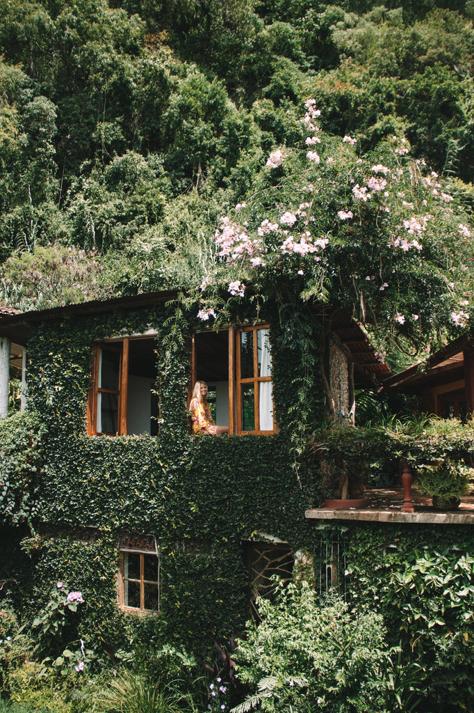 Hiptipico founder Alyssa looks out window at Lush Atitlan with a verdant ecowall exploding around her, lush eco resorts, top eco resorts, must see hotels, bohemian hotels and resorts to visit, green hotels